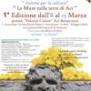 Incontri del sud: Calabria e Sicilia insieme per la cultura