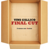 """Final cut"": lo stile intenso e contemporaneo del romanzo di Vins Gallico"