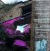 """Teatro, comunità, territorio: successo di """"Picitti Stories – Tempo Presente"""""""