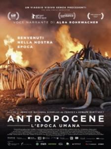 antropocede